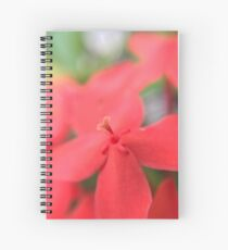 It's all in the details! Spiral Notebook