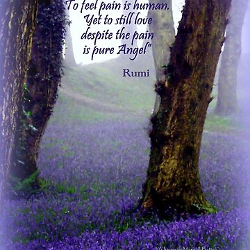 Bluebells and Rumi by Sita