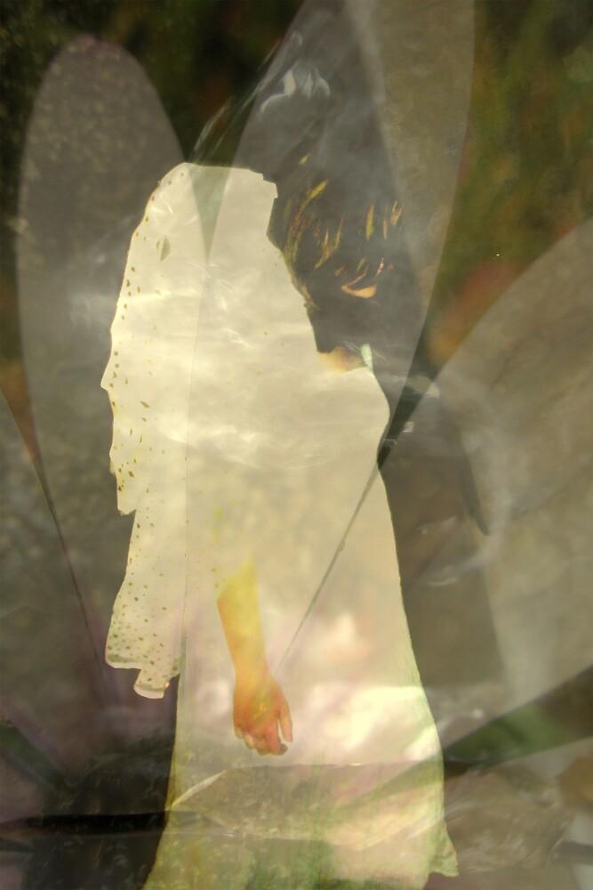 Wandering Angel by Melissa Park