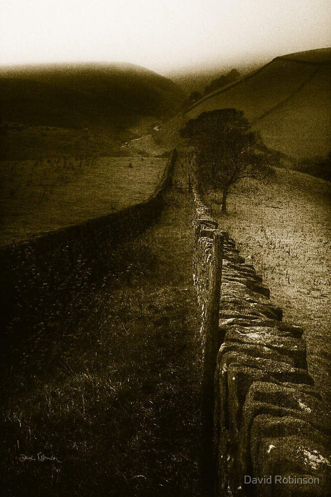 Down to Close Gate Bridge by David Robinson