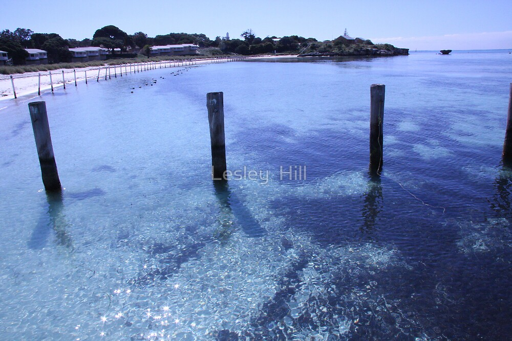 Beautiful Bay by Lesley  Hill