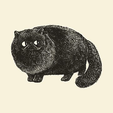 Gato persa negro de Huebucket