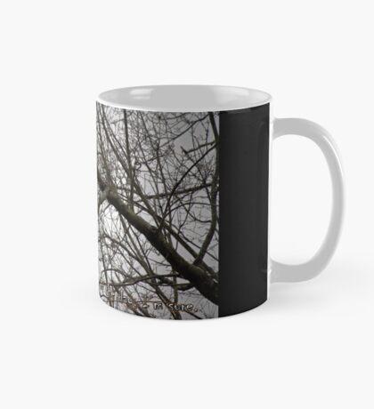Another Birthday? Mug
