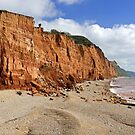 Salcombe Hill Cliff, Sidmouth by Rod Johnson