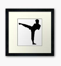 Martial Arts Framed Print