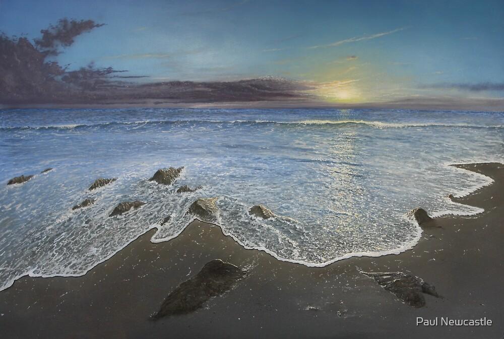 Rocky Shore by Paul Newcastle