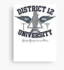 District 12 University Canvas Print