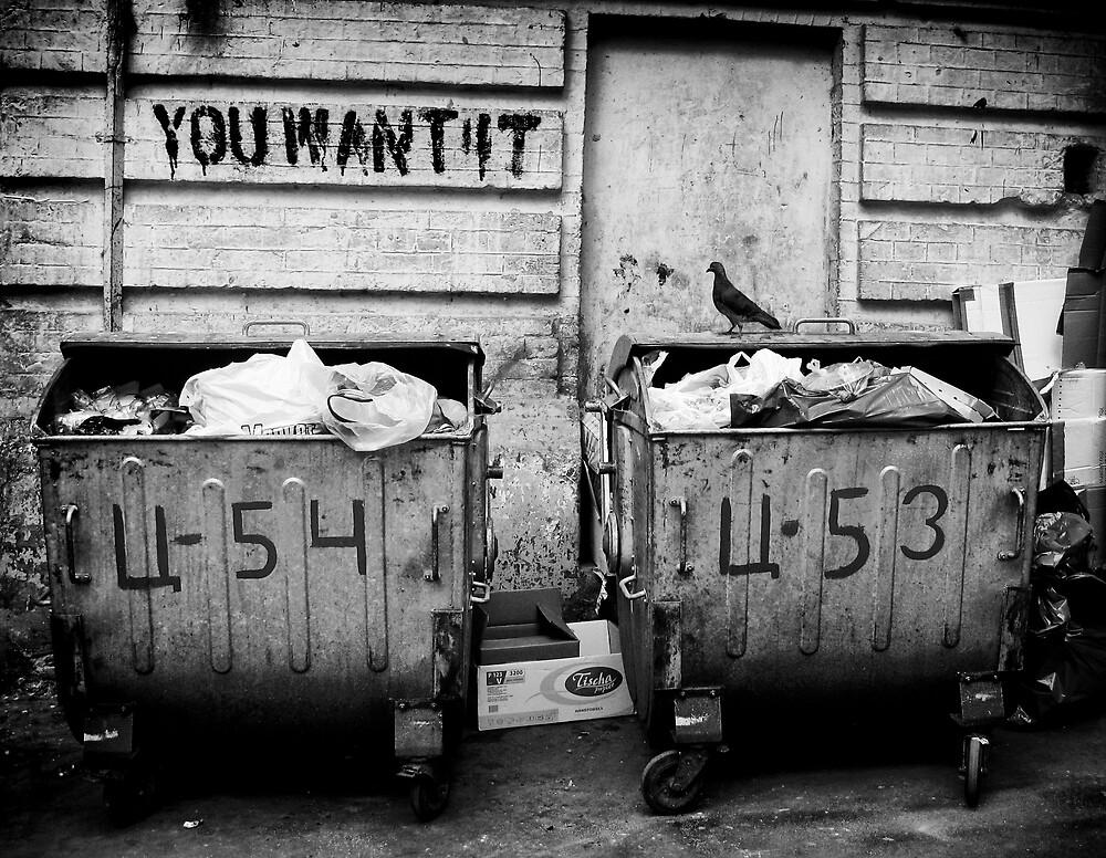 You Want It by Mikhail Palinchak