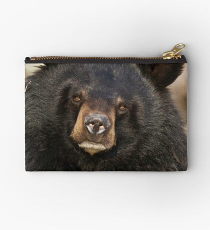 Asian Black Bear Studio Pouch