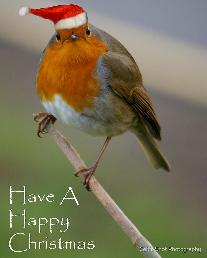 Bah Humbug ! by Celtic Shot Photography