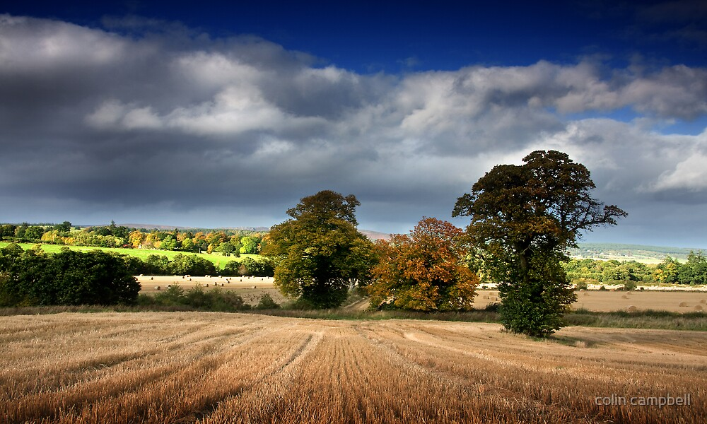 This rolling land II by colin campbell