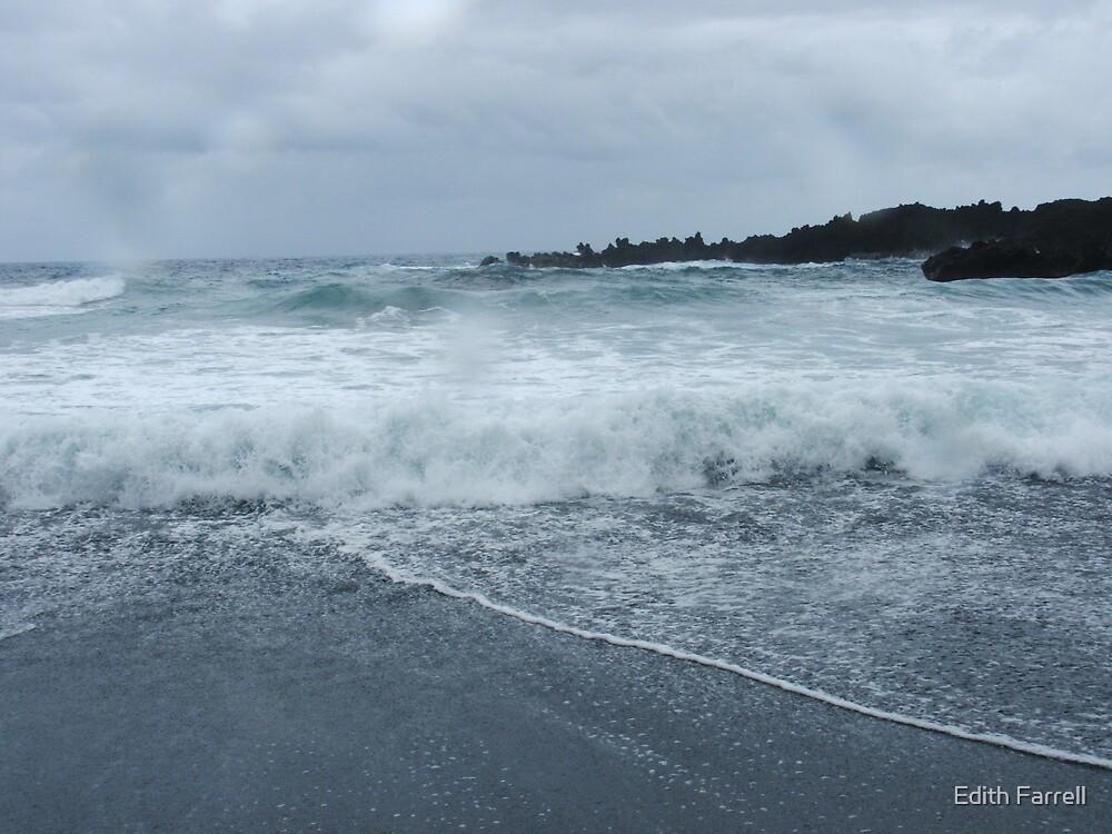 Black Sand Beach by Edith Farrell