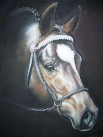 Riding Pony Stallion by uniqueartwork