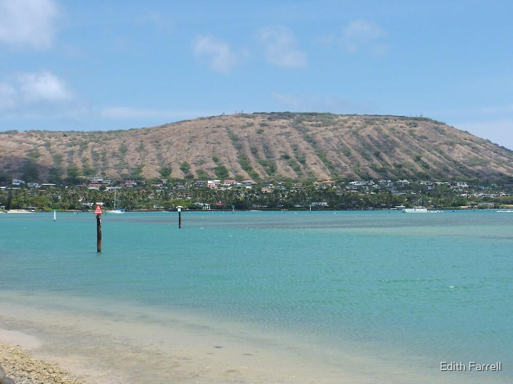 Maunalua Bay Beach by Edith Farrell
