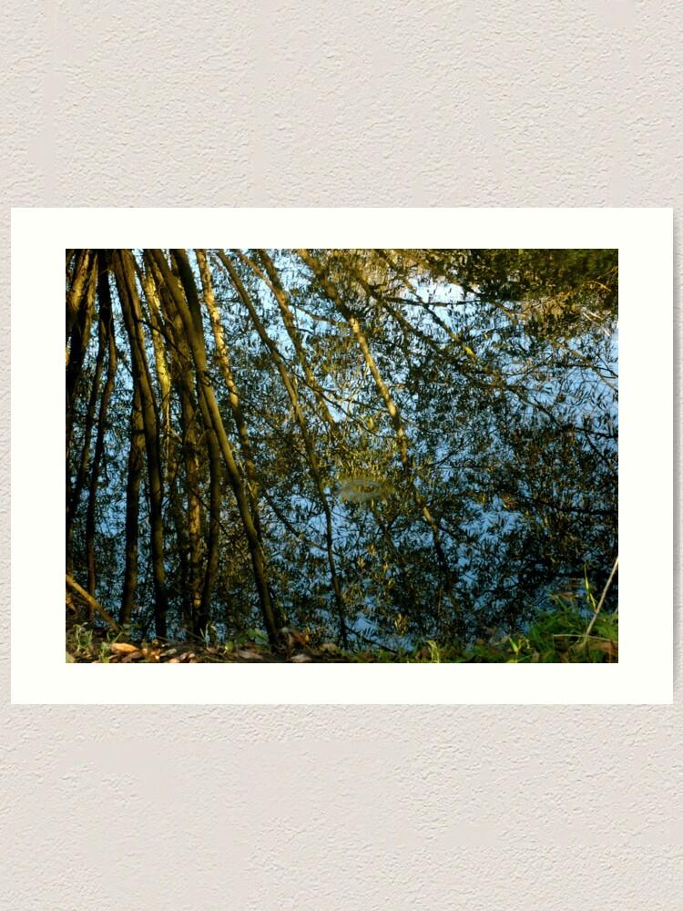 Alternate view of Reflections II Art Print
