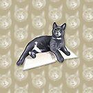 Ms Kitty by jimiyo