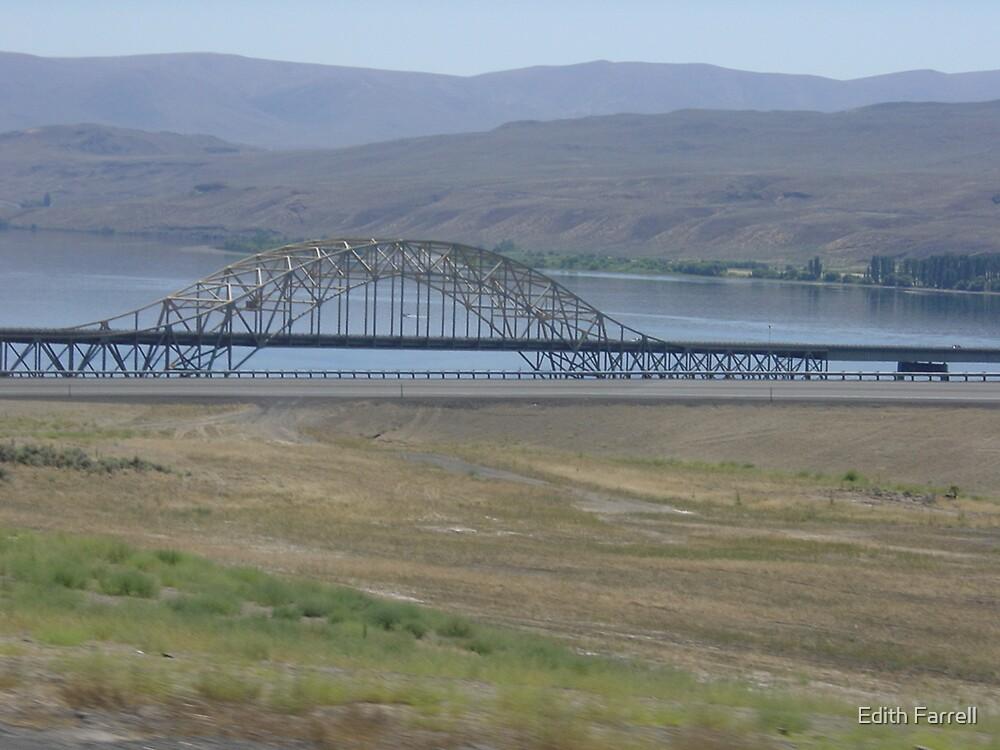 The Sellars Bridge by Edith Farrell