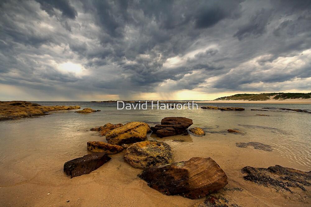 Passing Frenzy by David Haworth