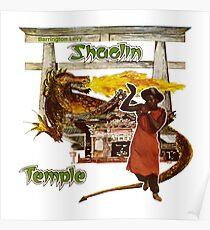 Shaolin tempel Poster