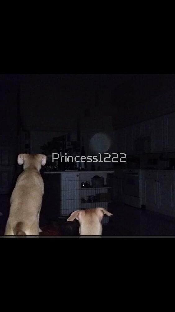 ORB SENSING PUPPIES by Princess1222