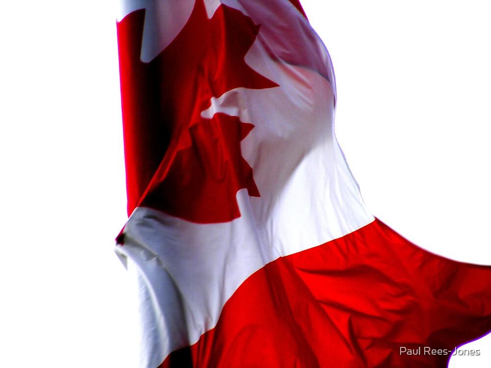 Oh Canada! by Paul Rees-Jones