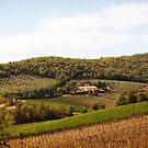 Tuscany Landscape - Italy by Yannik Hay