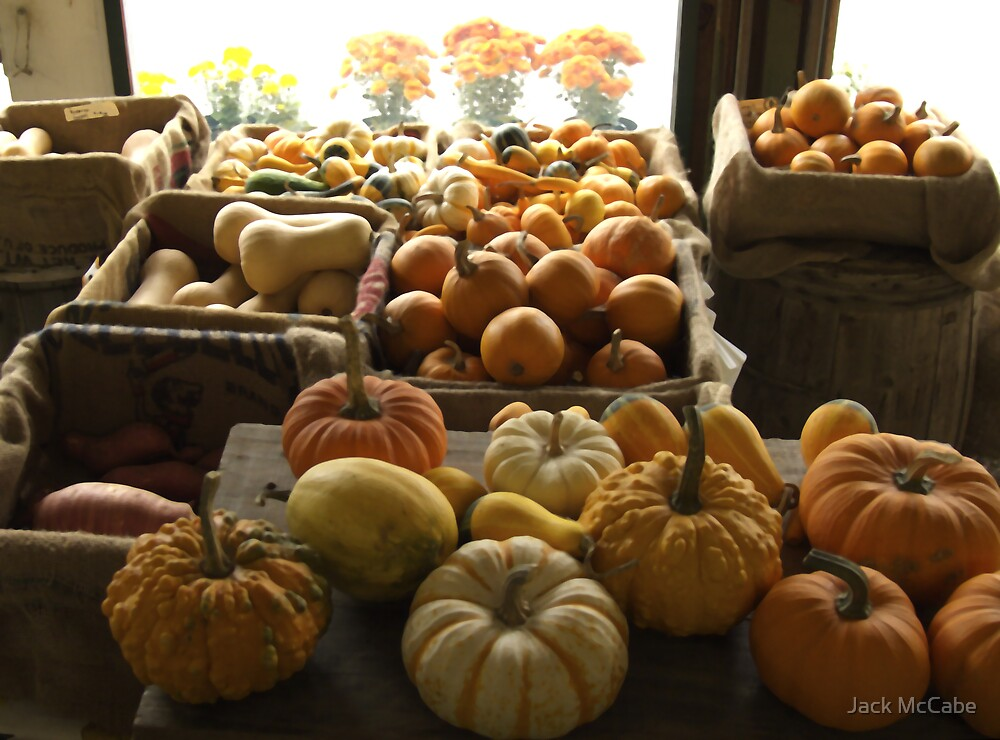 Pumpkins at the Sosnowski Farm Stand | Top 10 award by Jack McCabe