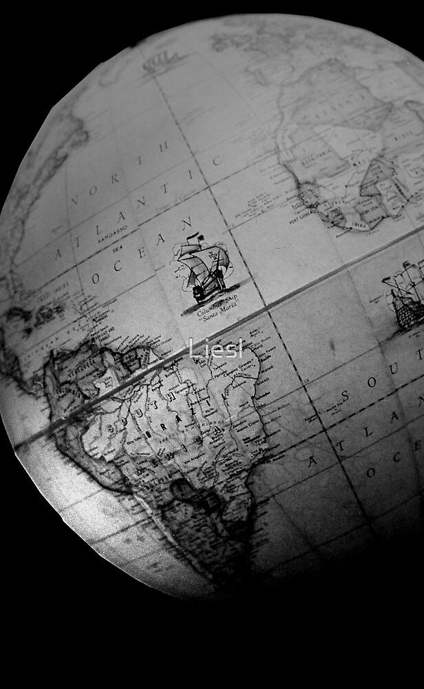 Earth - a globe in darkness by Liesl