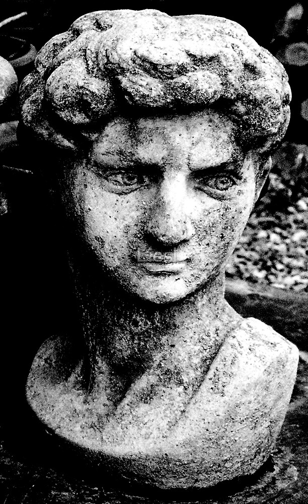 Face in stone by Liesl
