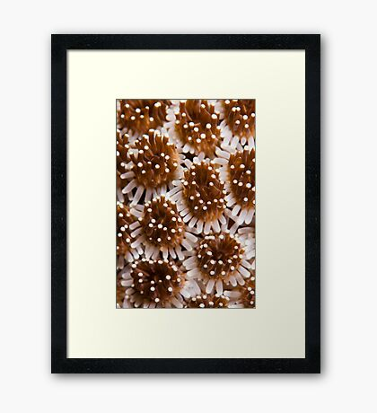 Underwater Abstract Framed Print