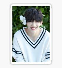 Seventeen S. Coups/Seungcheol Teen, Age Sticker