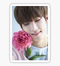 Seventeen Wonwoo Teen, Age Sticker
