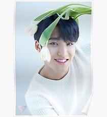 Seventeen Mingyu Teen, Age Poster