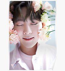 Seventeen Seungkwan Teen, Age Poster