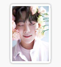 Seventeen Seungkwan Teen, Age Sticker