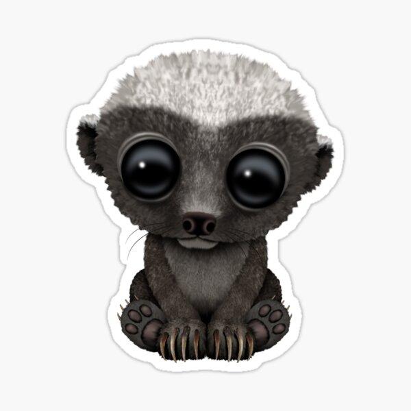 Cute Baby Honey Badger Sticker