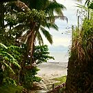 Path to the Beach by Barbara  Brown