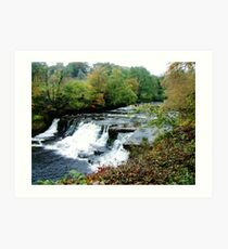 Aysgarth Falls Art Print