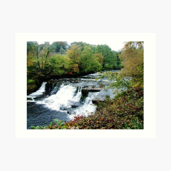 Aysgarth Falls Art Print