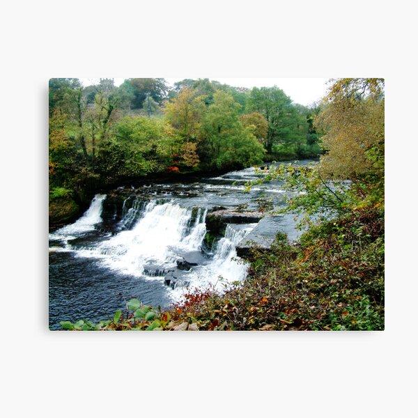 Aysgarth Falls Canvas Print