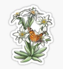 FLORAL ~ D1G1TAL-M00DZ ~ Edelweiss with Butterfly by tasmanianartist Sticker