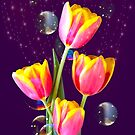 Tulips Stars And Bubbles by hurmerinta
