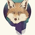 winter fox by lauragraves