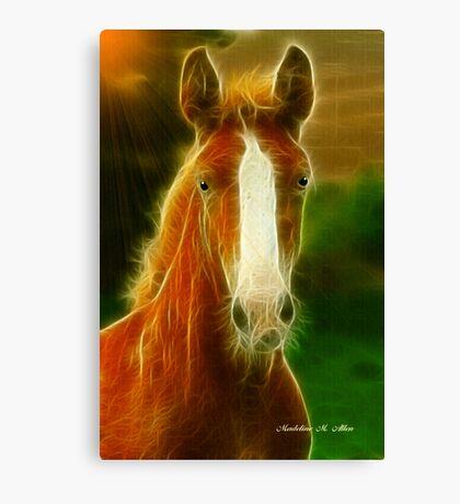 SUNNY RAY Canvas Print