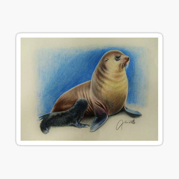 New Zealand Fur Seal Mother and Pup Sticker