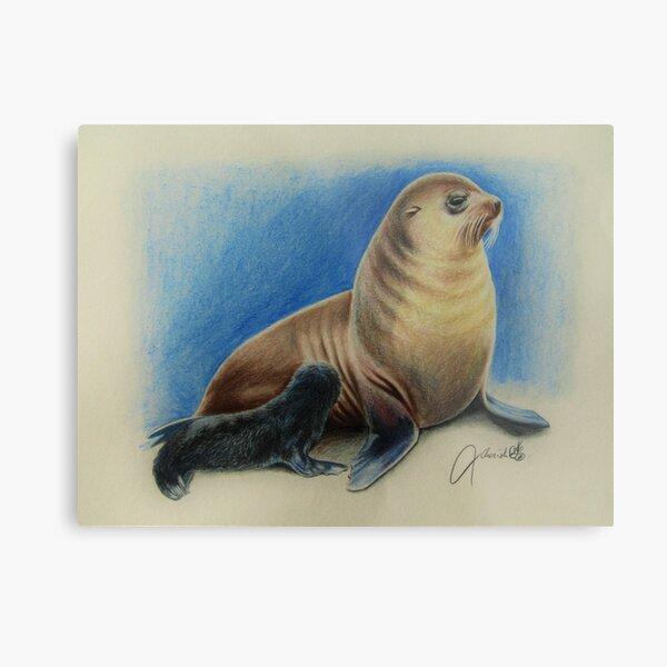 New Zealand Fur Seal Mother and Pup Metal Print
