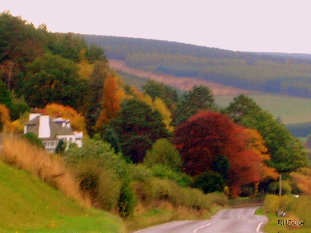 Autumn nr. Peebles, on the road to Gala (photograph) by BillCowe