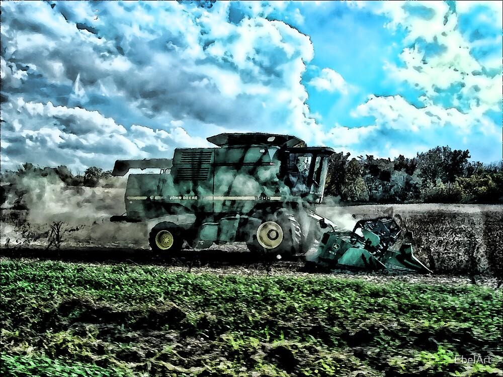 The Fall Harvest by EbelArt