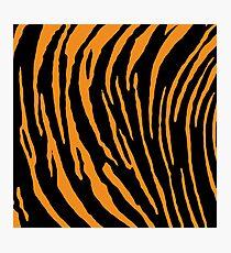Tiger Stripes Photographic Print