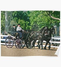 Stylized photo of a woman driving an Andalusian horse-drawn carriage in dressage competition at Del Mar Horsepark in Del Mar, CA US. Poster